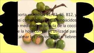 El Motoyoé, fruto típico de Santa Cruz Bolivia