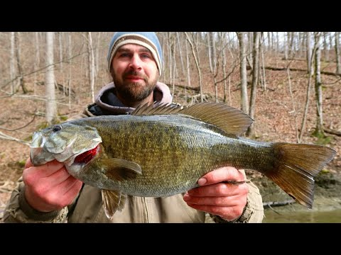 BIG Smallmouth!! On Dale Hollow Lake (Nikko Hellgrammite)