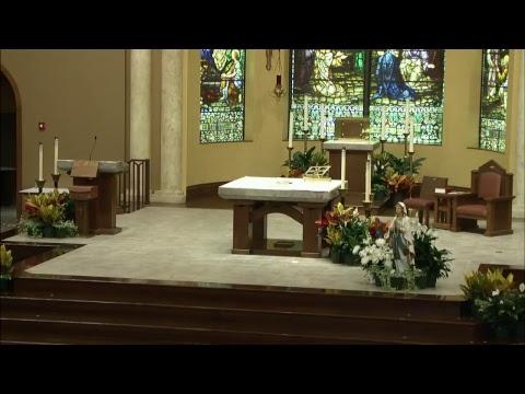 08-15-17 7pm Mass - Assumption of Mary