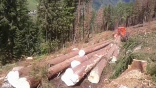 Lkt Timberjack  lesný traktor v akciii