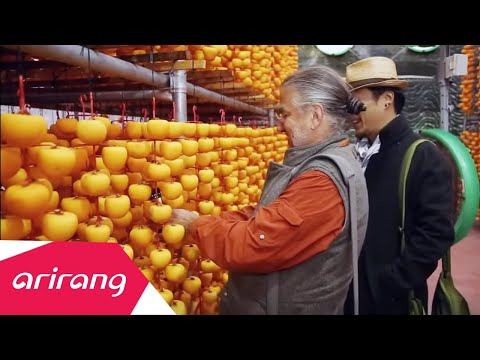 In Frame S2-Famous Sweet dried persimmons of Sangju   주황빛으로 물든 상주 곶감