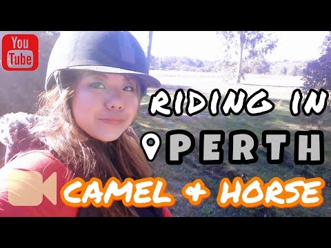 Travelogue | Riding Camels and Horses in Perth! [June 2017, EP 3]