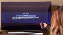 Reparatur LCD LED Fernseher