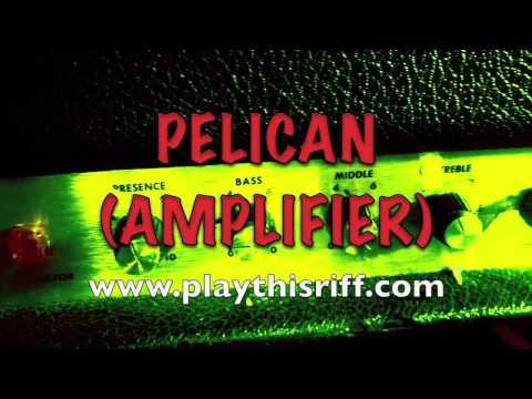 Pelican Amp
