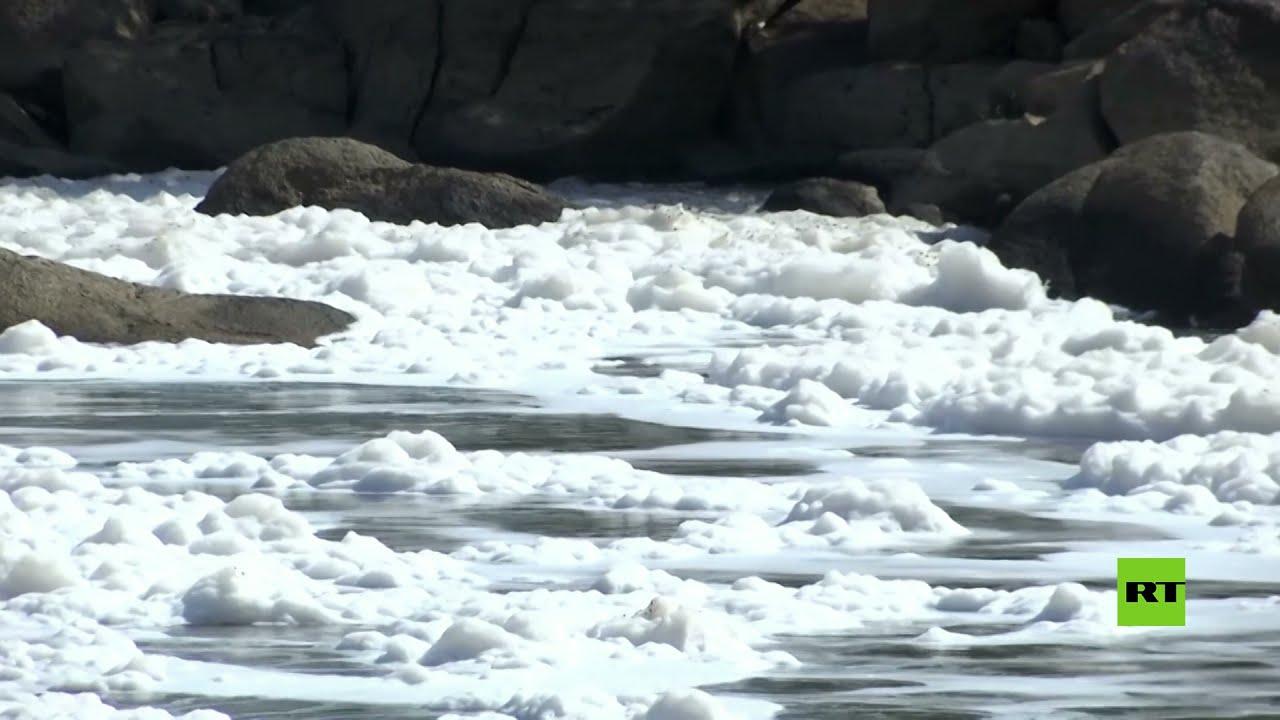 رغوة سامة تغطي أحد أكبر الأنهار في البرازيل  - نشر قبل 1 ساعة