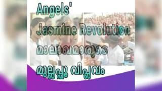 angels-jasmine-revolution