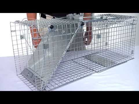 Havahart® Easy Set® Collapsible 1-Door Trap Models #1090 & #1092