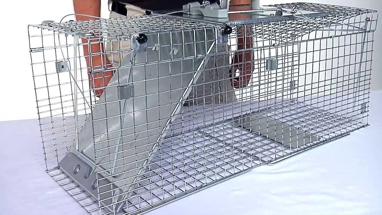 Havahart Easy Set Collapsible 1 Door Trap Models 1090 & 1092
