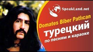 "Турецкий по песням&караоке  Barış Manço ""Domates Biber Patlıcan"""