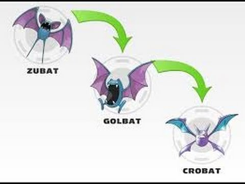 POKEMON SUN & MOON EVOLVING ZUBAT TO CROBAT - YouTube