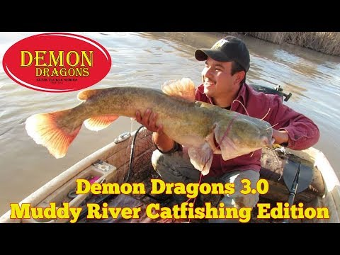 Muddy River Catfishing (Kris Flores tangles with a Monster)