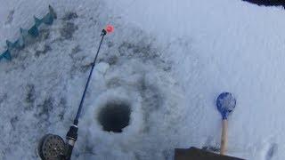 Перша зимова риболовля 2018.На жаль нічого не зловили, будемо пробувати ще.