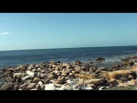 Day trip around Cape Peninsula