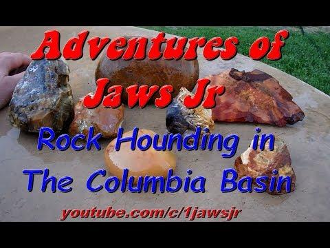 Rock Hounding in the Columbia Basin