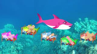 Baby Shark Sing and Dance! | Five Little Babies Jumping on the Bed | Dance with Sharks Family!