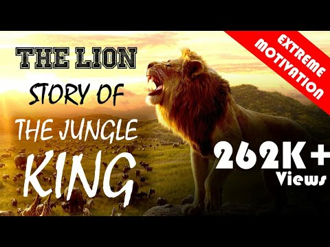 THE LION || STORY OF THE JUNGLE KING || A MOTIVATIONAL VIDEO BY BHUVNESH SWAMI
