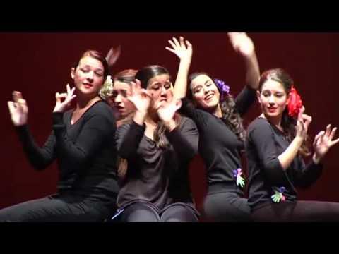 Canción «80 veces» de Rozalén en LSE (grupo Sonrisas)