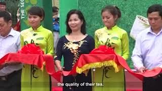 Thai Nguyen Tea Top specialty gift of Asia