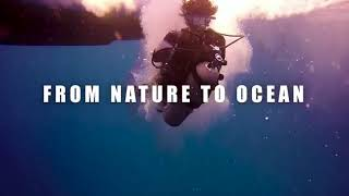 Learn To Dive at Dungun Dive Resort