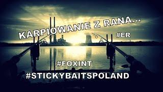 """""""Karpiowanie z rana..."""" Elektrownia Rybnik StickyBaits Fox INT"""
