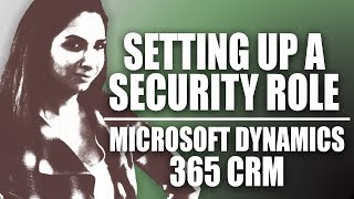 Set Up A Security Role in Microsoft Dynamics 365 CRM 2017