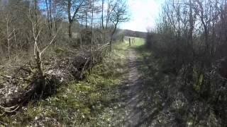 MTB-Tour Singletrail Kirkeler Wald (Homburg/Saarland)