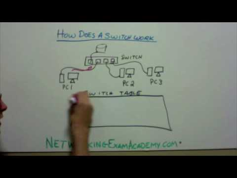 How a Networking Switch Works - YouTube