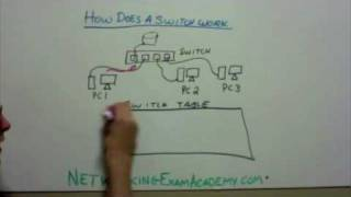 How Networking Switch Works
