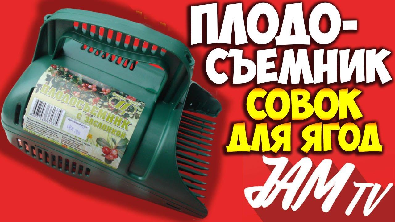 Социальный репортаж: В Костромской области собирают рекордный .