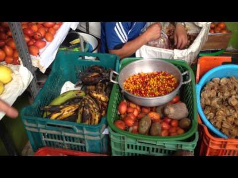 Fruits of the Peruvian Amazon Part 1
