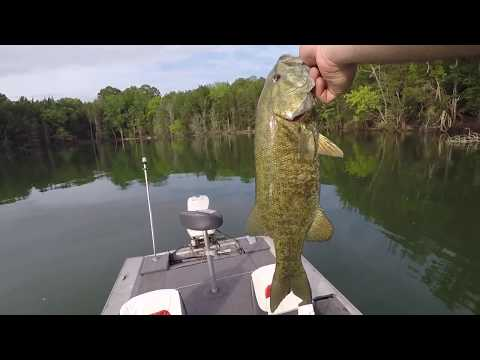 Early Summer Bass Fishing Tips
