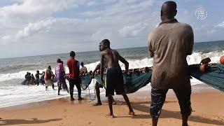 Доходы от рыболовства в водах Африки сделают прозрачными (новости)(http://ntdtv.ru/ Доходы от рыболовства в водах Африки сделают прозрачными. Сотни лодок мавританских рыбаков кажды..., 2016-02-18T12:45:29.000Z)