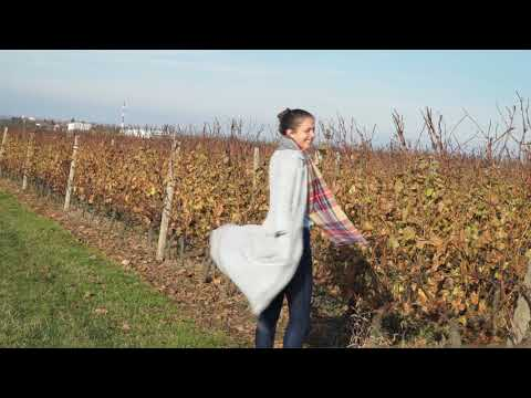 Best of Slavonia with Ashley Colburn and Nova rent a car Croatia
