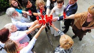 Свадьба Владимира и Ирины 28-08-2013