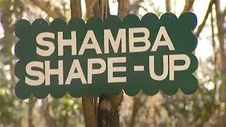 Shamba Shape Up Clips - Staking Tomatoes