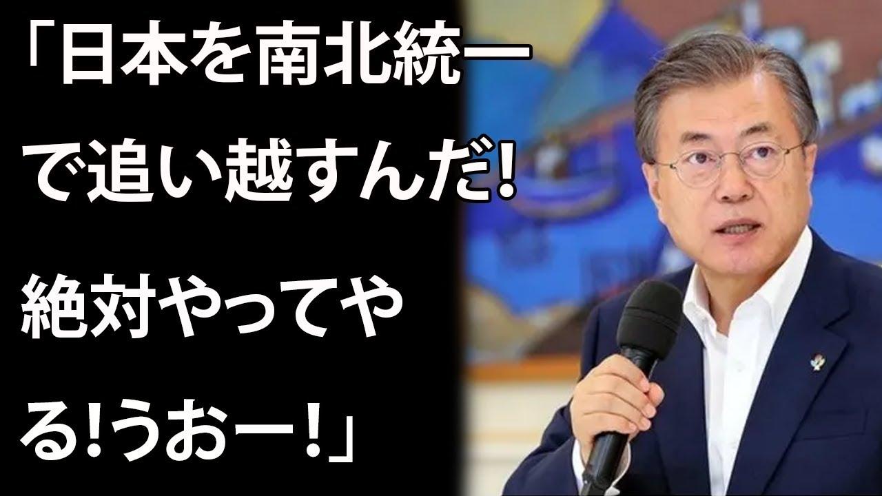 韓国文在寅「日本を南北統一で追い越すんだ!絶対やってやる!うおー!」  誰か止めてやれよ…
