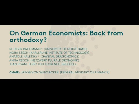 On German Economists: Back from orthodoxy? - Forum New Economy - VII New Paradigm Workshop: