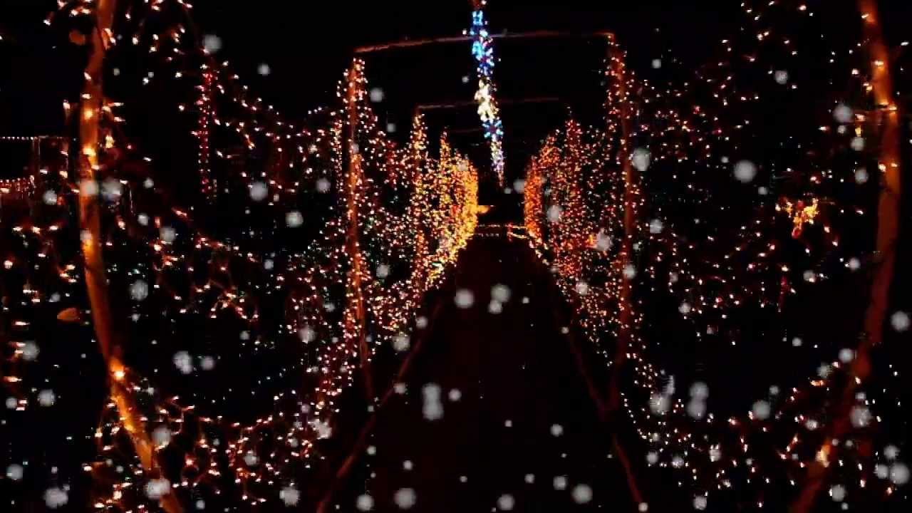 AMAZING Christmas Light Display In Mauldin South Carolina 2012  - Christmas Lights In Sc