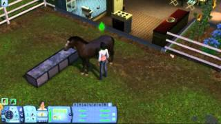 The Sims 3 Pets - Horse Training Tutorial Part 2 of 2