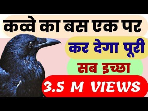 ख़�द देखें काक तंत�र  त�रंत कार�य सिद�धि करवाने वाला उपाय - Fulfil Your Wish With A Crow Feather