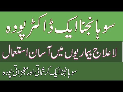sohanjna ke fayde | Health Benefits Of Moringa in urdu | dru