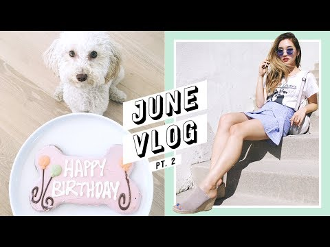 My Baby's 1st Birthday + Daily Life in LA | June Vlog #2