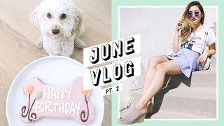 My Baby's 1st Birthday + Daily Life in LA | June Vlog #2