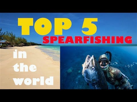 TOP 5 SPEARFISHING DESTINATIONS IN THE WORLD - From Ascension Island To Bali In Freediving