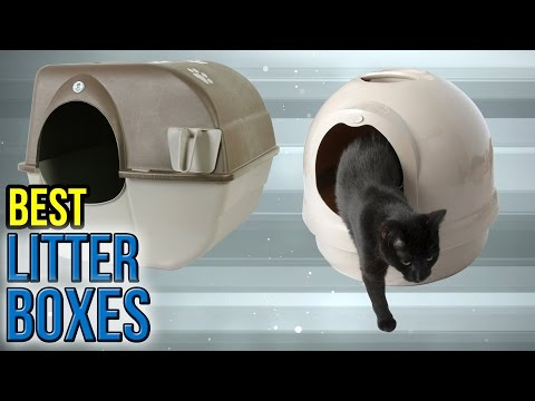 10 Best Litter Boxes 2017
