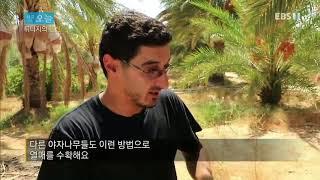 다큐 오늘 - 튀니지의 온천_#001