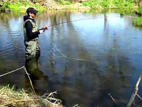 Fly fishing wisconsin early season trout 2012 part 1 for Fishing season wisconsin