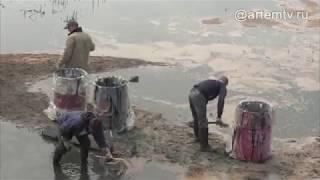 Специалисты выясняют причины разлива мазута в Соленое озеро в Находке