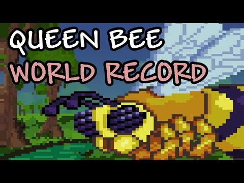 [EXPERT] Queen Bee Speedrun // WR 49:00