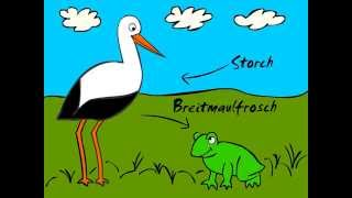 German Cartoons: Storch trifft Breitmaulfrosch (Trailer) - Learn German easily